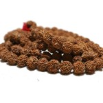 Five-faced(Mukhi) Rudraksha Mala(108 plus one) 18-20mm